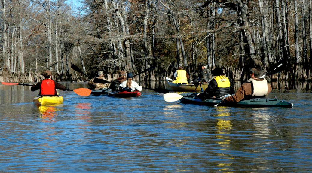 Cache River: Float it, Fish it, Soak it in!